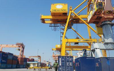 Hãng tàu, cảng biển thiệt hại triệu USD vì dịch Corona